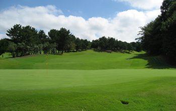 関東で初心者向けのゴルフコースをお探しなら鎌倉パブリックゴルフ場へ