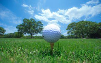 ゴルフ初心者向け!正しいティーの選び方ガイド