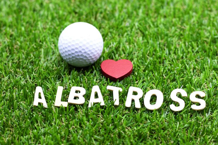 アルバトロスの意味
